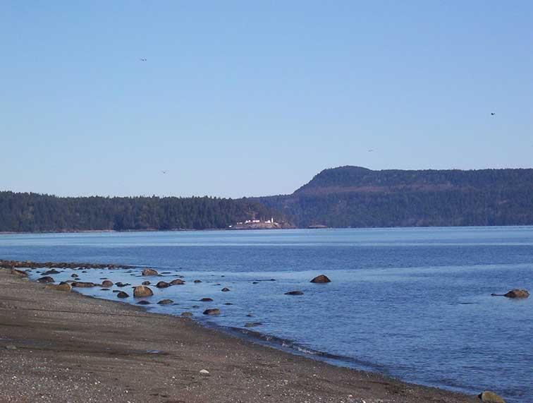Beach and Chrome Island